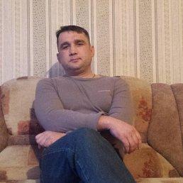 Алексей, 41 год, Таганрог