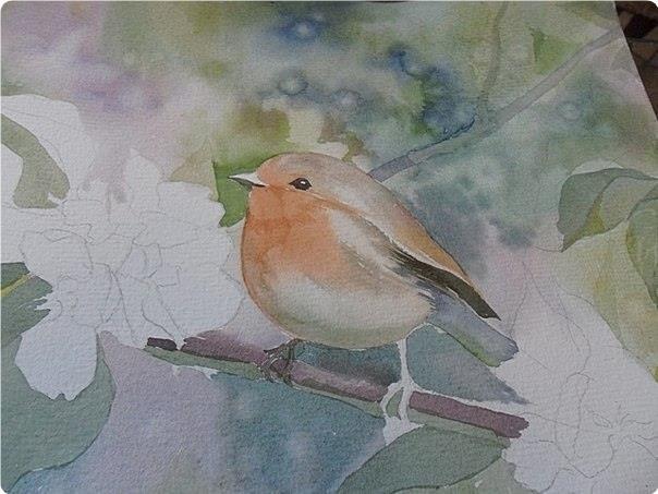 Птичкa - 4