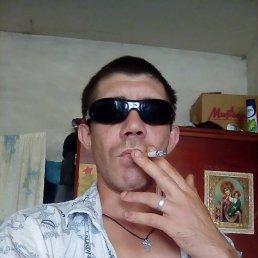 Пётр, 29 лет, Сердобск