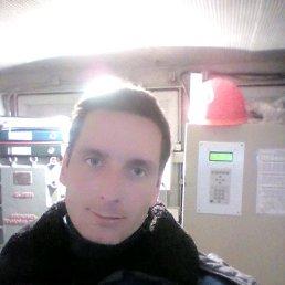 алексей, 37 лет, Пачелма