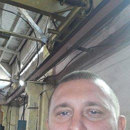Сергей, 34 года, Сосница