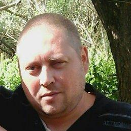 Maks, 38 лет, Старая Русса