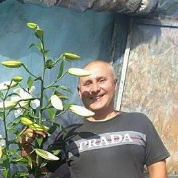 Вован, 47 лет, Боярка
