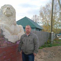 Александр, 44 года, Видяево