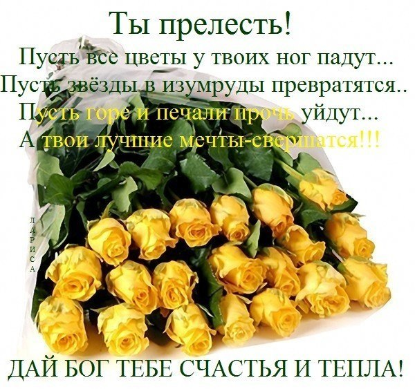 Все цветы к твоим ногам фото