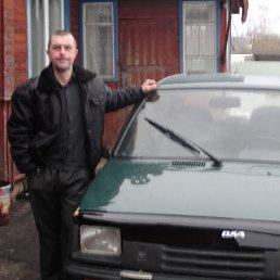 Вадим, 36 лет, Брянск
