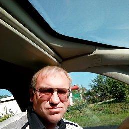 Владимир, 47 лет, Электрогорск