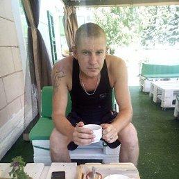 Степа, 34 года, Зугрэс