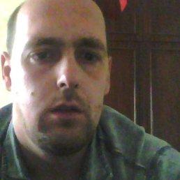 максим, 29 лет, Керчь