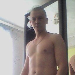 Перевозчиков, 33 года, Ижевск