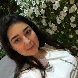 Карина, 20 лет, Люберцы