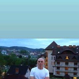Богдан, 56 лет, Тернополь