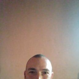 Дима, 41 год, Шпола