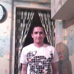 артур, 28 лет, Саратов