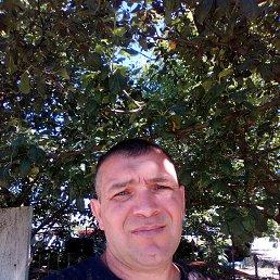 Анатолий, 40 лет, Самбор