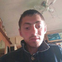 Сергий, 29 лет, Бердичев