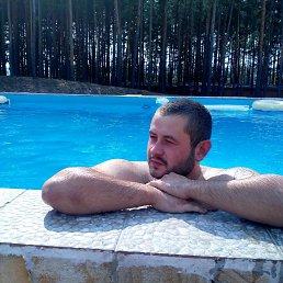 Юрий, 27 лет, Волчанск