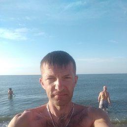 Игорь, 40 лет, Вышгород