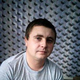 Юрий, 29 лет, Змиевка