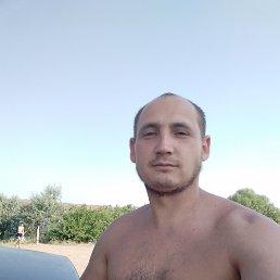 Сергей, 31 год, Краснодон