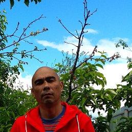 Dmitrii, 41 год, Курган
