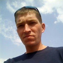 Алексей, 26 лет, Башмаково