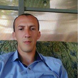 Денис, 30 лет, Тарасовский