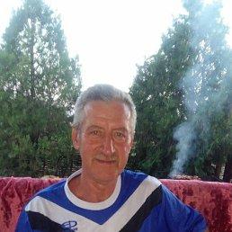 Александр, Межевая, 61 год