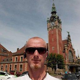 Николай, 46 лет, Васильков
