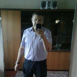Дмитрий, 43 года, Харьков