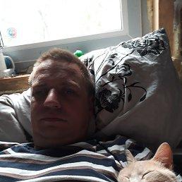 Тимофей, 36 лет, Малая Вишера