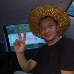 Серж, 30 лет, Вишневое