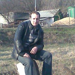 Саша, 34 года, Краснодон
