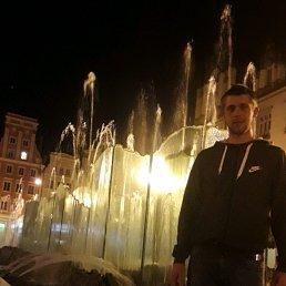 Роман, 29 лет, Теребовля
