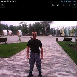Анатолий, 47 лет, Смела