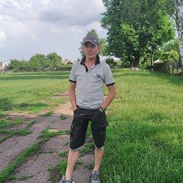 Виталий, 36 лет, Лебедин