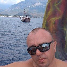 Саша, 34 года, Борисполь