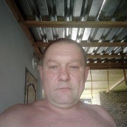 Александр, 50 лет, Северодонецк