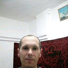 Андрей, 40 лет, Херсон