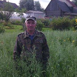 Андрей, 53 года, Пикалево