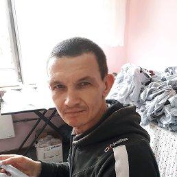 Валерий, 48 лет, Горишние Плавни