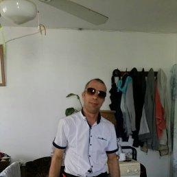 Илья, 44 года, Черновцы