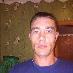 Аркадий, 30 лет, Волгоград