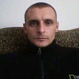 Юра, 36 лет, Виноградов