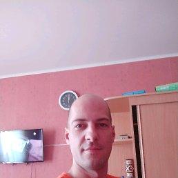 Николай, 33 года, Лотошино