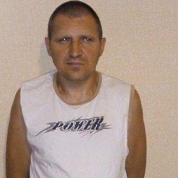 Вячеслав, 45 лет, Херсон