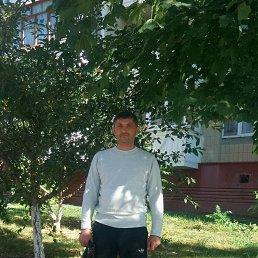 Дима, 39 лет, Белгород