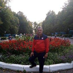 александр, 58 лет, Купавна