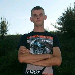 Толик, 26 лет, Верховцево