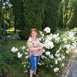 Ксения, 44 года, Сумы